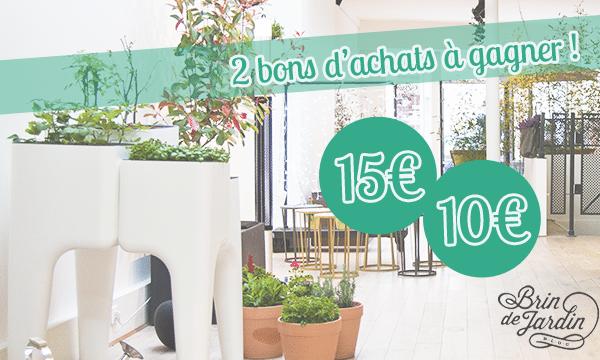 concours gagnez jusqu 39 15 chez brin de jardin. Black Bedroom Furniture Sets. Home Design Ideas
