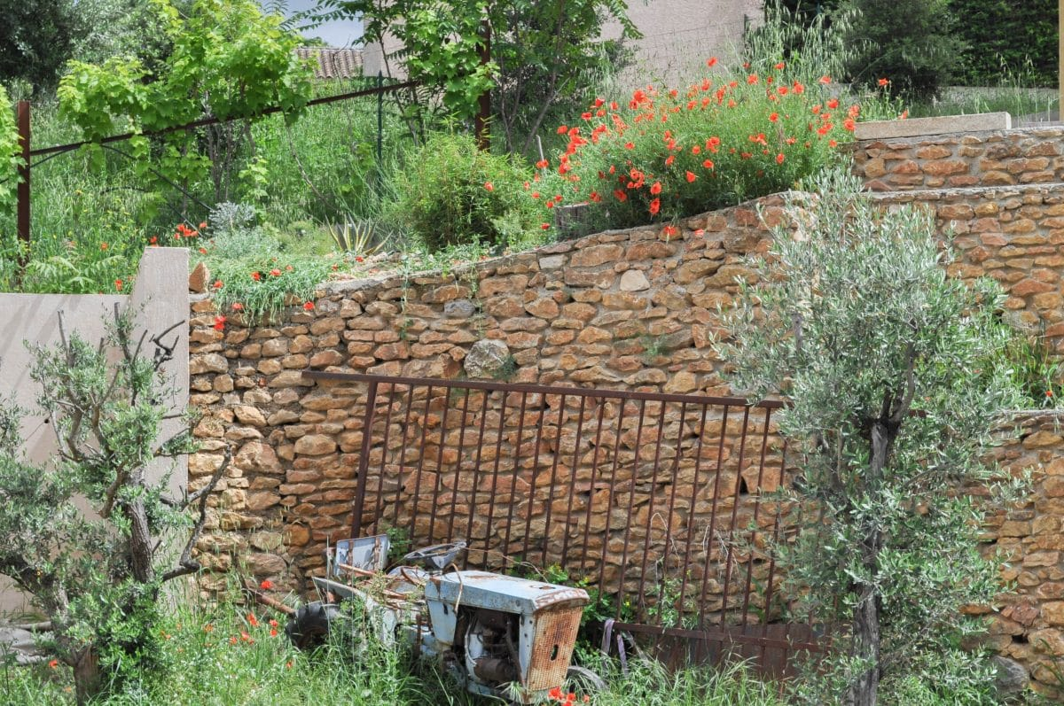 jardin-provencal-facile