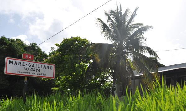 lexique-creole-guadeloupe